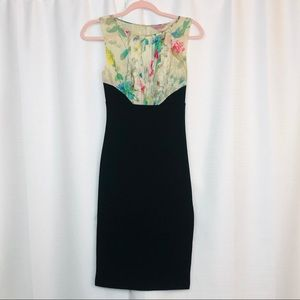 Ted Baker Dress Size 0